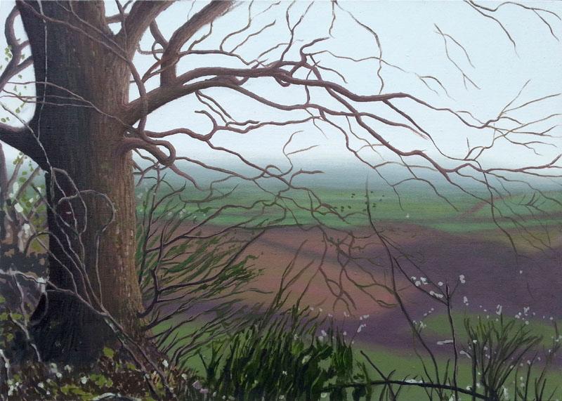 Kit Glaisyer - Lewesdon Winter
