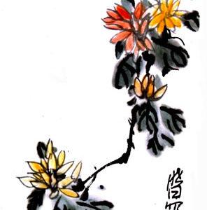 Xiao Bai Li - Flowers